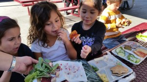 north park schools tasting radishes at thomas jefferson elementry school garden